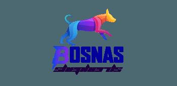 Bosnas Shepherds